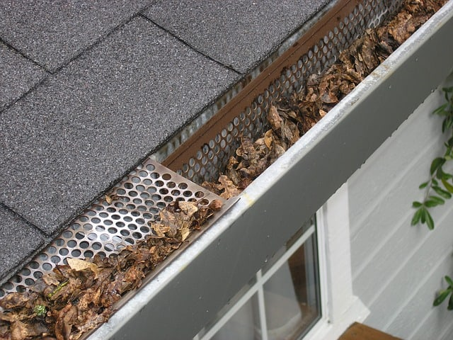 gutters, fall, cleaning